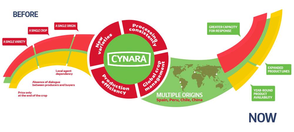 cynara-before-after